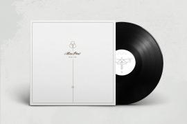 AtlasBird_Dua Lux_Vinyl_Mock Up